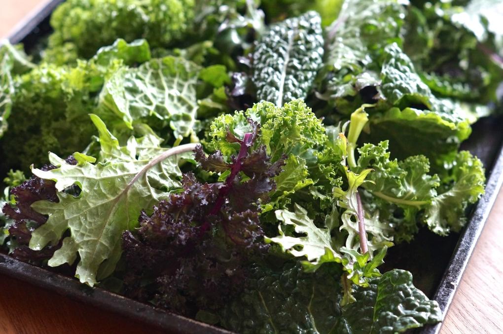 Curly Kale, Lacinato Kale, Russian Kale